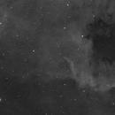 Cygnus Wall (North American Nebula in HA),                                James Newman