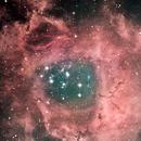 NGC 2237 Nebula Rosetta 16-03-2021,                                Wagner