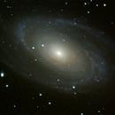 Messier 81,                                Günther Eder