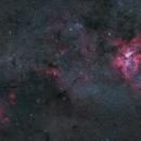 ETA, RUNNING CHICKEN & NGC3576,                                Wilson Lee