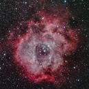 Rosette Nebula,                                Art Morrison
