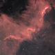 The Cygnus Wall,                                Marco Prelini