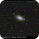 M63, Sunflower Galaxy with AT8IN,                                David Dearden