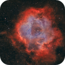 Rosette Nebula in Hubble and Bicolor - one shot exposure! ,                                Arno Rottal