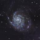NGC 5457 -  M101 - Pinwheel galaxy,                                Richard Willits