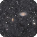M81/M82 & Surrounding IFN,                                Tristan Campbell