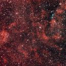 NGC 6914 in Cygnus,                                RonAdams
