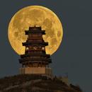 moon set,                                Steed Yu