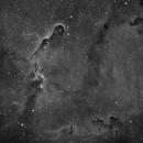 IC1396 - Elephant's Trunk Nebula [Ha],                                Tobias Borer