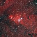 Cone nebula,                                Barani Roberto