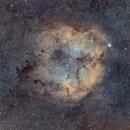 IC 1396 - Elephant's Trunk HOO,                                Jared Holloway