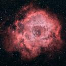 Rosette Nebula,                                Youngsik Park