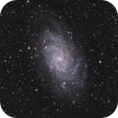 M33 Triangulum Galaxy LRGB HDRCombination Test,                                Ben Koltenbah
