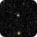 M76,                                geco71