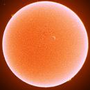 Sun in H-Alpha,                                Onur Atilgan