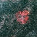 Nébuleuse et amas de Céphée (IC1396),                                Serge Golovanow
