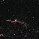 Crrus-West NGC6960,                                Peter Markert