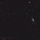 Leo Galaxy NGC 2903,                                Al_Zinki