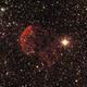 Jellyfish Nebula,                                Ryan Smith