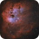 IC401 Tadpoles in Auriga,                                Hunter Harling
