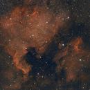 North America Nebula and Pelican Nebula,                                Chris Schaad