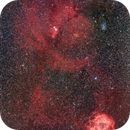 Rosette Nebula Chistmas Tree,                                Łukasz Żak