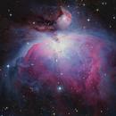 M42 - The Orion Nebula,                                Steve Ludwig