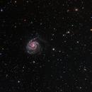 M101 Pinwheel Galaxy,                                Sam Rodgers