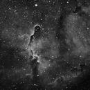 IC 1396 (Elephant Trunk) h-alpha - crop,                                HaSeSky