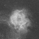 NGC2244,                                Copernicus