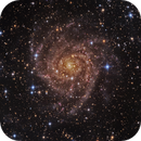 IC342 - Hidden Galaxy,                                Jonathan W MacCollum
