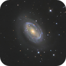 NGC 4725,                                Brice