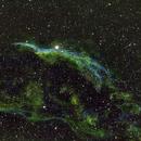 NGC6960 – Witch's Broom Nebula,                                Mark Spruce