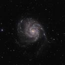 Messier 101,                                Maciej
