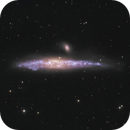 Whale Galaxy (NGC 4631),                                Kevin Whiteside