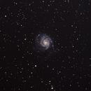 M 101 Whirlpool Galaxy,                                Drumgar