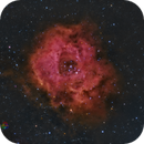 NGC2239 ROSETA (urbana),                                Jose Luis Bedmar