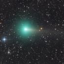 C/2019 Y1 ATLAS - 23.04.2020,                                Nippo81