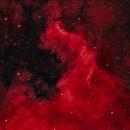 NGC7000 / North America Nebula,                                hy
