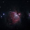 Orion Nebula,                                Scott Muckleroy