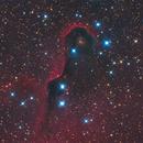 IC1396 LRGB,                                Christopher Gomez