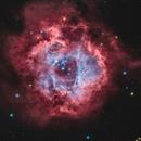 Rosette Nebula  NGC 2237,                                Lorenzo Palloni