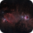 Orion and Horse Head Widefield,                                Brian Maurer