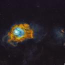 M8 ang NGC 6559 - Hubble Palette,                                Rodrigo Andolfato