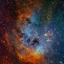 IC- 410 The Tadpole Nebula,                                Matt Harbison