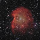 NGC2174,                                latrade24