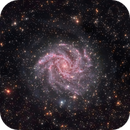 NGC 6946 Fireworks Galaxy and SN 2017eaw,                                jeffweiss9