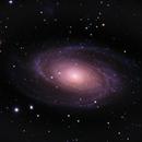 Messier 81,                                Steven Gill (Parkesburg Observatory)