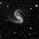 NGC 2442,                                Roger Groom