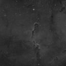 IC1396 (Elephant's Trunk nebula) Ha,                                Xplode